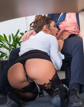 Julia Roca Has Her Hairy Pussy Pounded in the Office-3